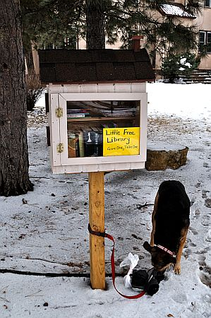 Little Free Library in South Minneapolis near Washburn Park Water Tower.